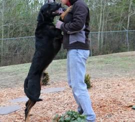 Watson - Carteret County Humane Society